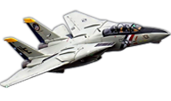 F14 Tomcat [Freewing Model]