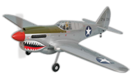 P-40 kitty Hawk  [Phoenix Model]