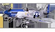P-51D Mustang Petie  [fms]