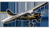 DH-2 Beaver [fms]