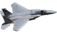F-15C Eagle [Freewing Model]