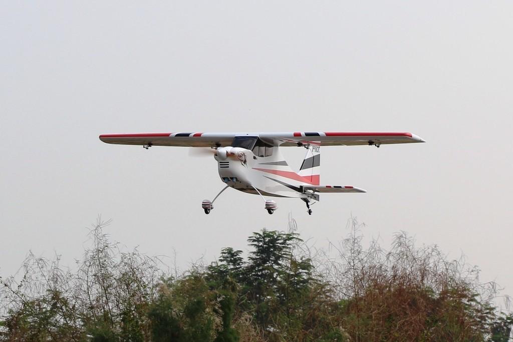 Sky-Wolf Pilot RC